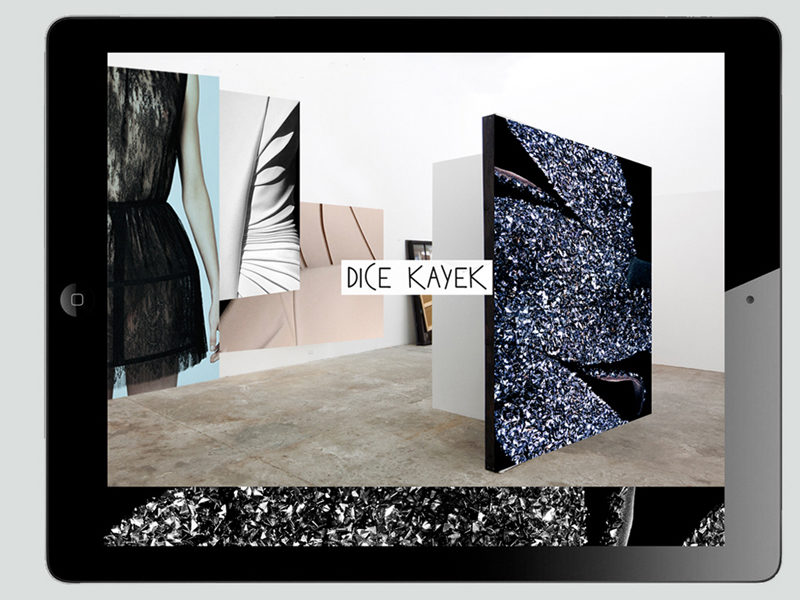 DICE KAYEK . PROJECT X DESTRICTED DIGITAL EXPERIENCE